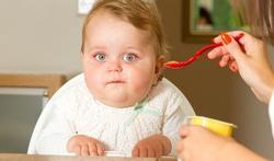 Maken kunstmatige zoetstoffen baby's dikker?