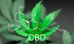 123-cannabis-scheik-04-19.png