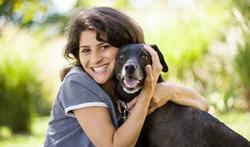 Waarom beter geen huisdieren als u geen milt meer hebt?
