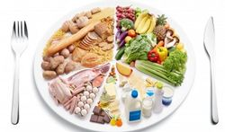 Vlaamse consensustekst over gezonde voeding en beweging