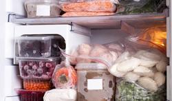 Mag je ontdooid voedsel opnieuw invriezen?