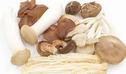 Zo bereid je de lekkerste champignons en andere paddenstoelen