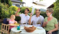 Hoe houd je wespen uit je buurt?