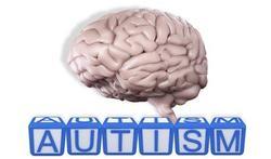123-hers-autism-psych--07-15.jpg
