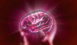 Ligt de oorzaak van fibromyalgie in het brein?