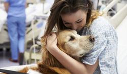 Voelen honden een epilepsie-aanval bij hun baasje aankomen?