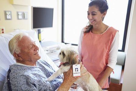 123-huisdier-hond-zh-oudere-man.jpg