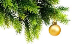 Hoe help je je kerstboom om zijn naalden vast te houden?