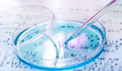 Nieuwe test spoort zeldzame afwijkingen op bij bloedverwanten