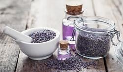 Lavendel- en theeboomolie werkt als hormoonverstoorder