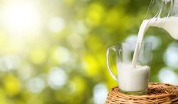 Melk verhitten tegen koemelkallergie