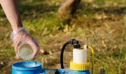 Onkruidverdelger glyfosaat (Roundup) niet kankerverwekkend?
