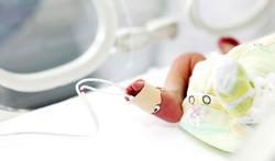 Oorzaak ernstige darmziekte bij te vroeg geboren kinderen op het spoor