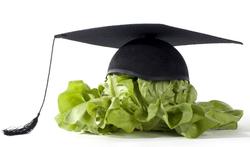 Studeren en voeding