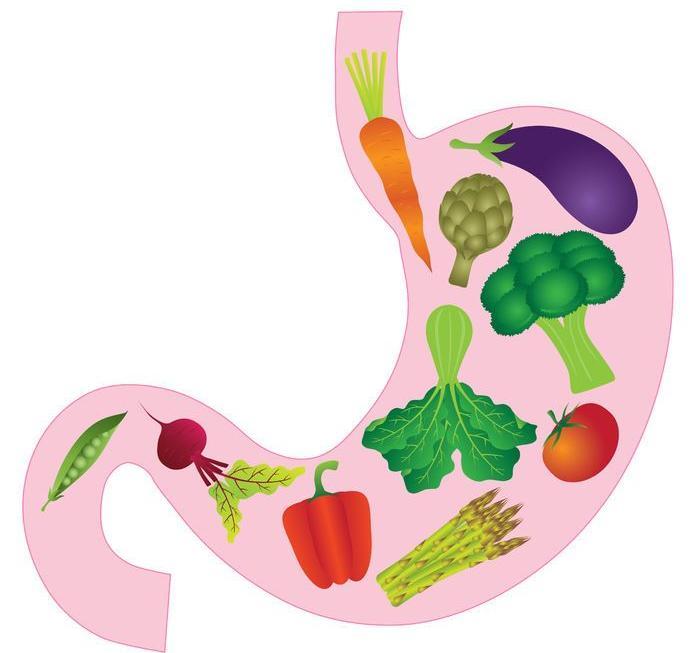 123-tek-maag-vertering-groenten-fr-06-171.jpg