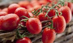 Kan ik het risico op prostaatkanker verkleinen door tomaten te eten?