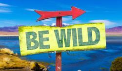 123-txt-be-wild-reizen-avontuur-01-18.jpg
