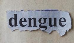 Gevaar voor dengue-epidemie tijdens WK Brazilië