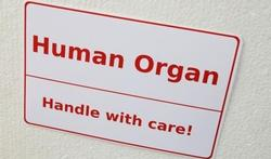 Voor het eerst meer orgaandonoren dan niet-donoren