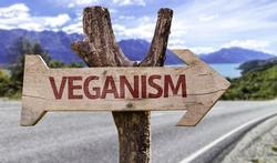 Wereld veganismedag Veganisme gezond of riskant?