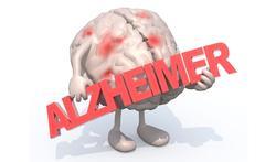 Omgevingsfactoren spelen belangrijke rol bij het stapelen van eiwit in hersenen