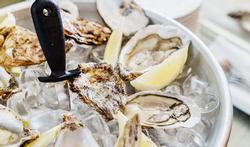 Zijn oesters gezond?