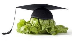 Eten tijdens de examens: Hersenvoeding