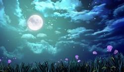 Volle maan zorgt niet voor slapeloosheid