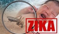 20 vragen over het Zikavirus
