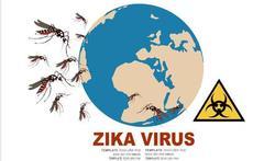 Kan het zikavirus zich binnen Europa verspreiden?