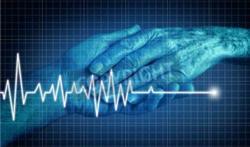 Hoe strikt is euthanasie geregeld in ons land?
