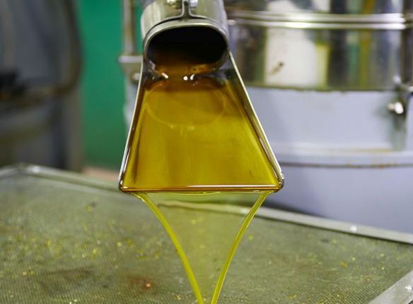 123h-olijf-olie-pers-11-19.jpg