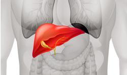 Belangrijke innovatie bij behandeling leverkanker aan UZA