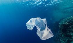 Microplastics in het milieu: een bedreiging voor de volksgezondheid?