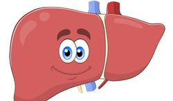 Draag zorg voor je lever, pas op met deze producten
