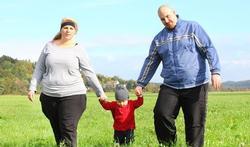 Grote rol genen bij overgewicht