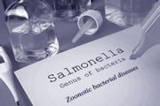 Fotolia_txt-salmonella-09-15.jpg