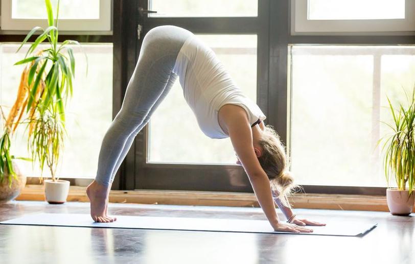 HD-yoga-neerw-hond-04-17.jpg