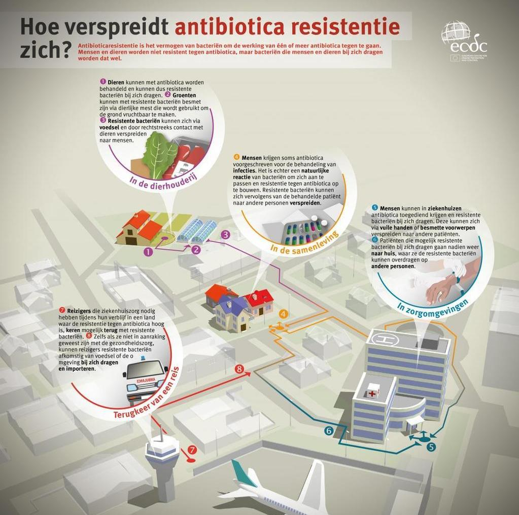 antibiotic-resistance-spread-NL.jpg