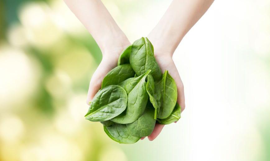 f-123-HD-groent-spinazie-dieet-09-18.jpg