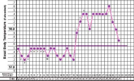 nfp-temperatuurcurve.jpg