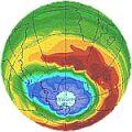 ozon-polen.jpg