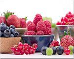 rood-fruit-3.jpg
