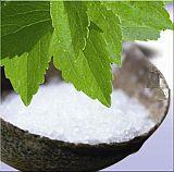 stevia-plant-160.jpg