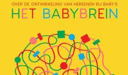 Het Babybrein. Over de ontwikkeling van de hersenen bij baby's