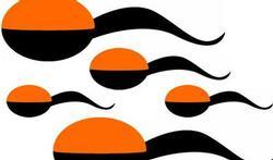 tek-sperm-oranje-zw-1710_400_10.jpg