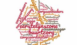 Hervorming eerstelijnszorg in Vlaanderen