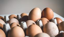 Mag je elke dag een ei eten?