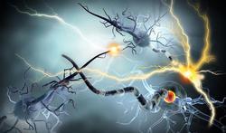 Epilepsie : causes, symptômes, traitements