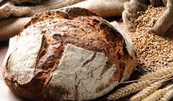 Brood en gezondheid